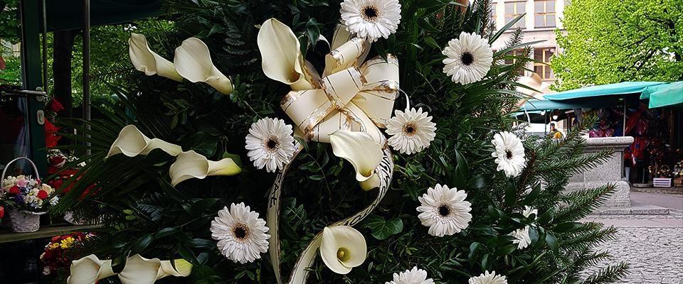 Kwiaty Solny Stoisko 14 Home Facebook